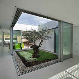 minimal windows glazed courtyard